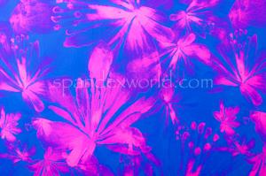 Floral Print (Blue/Pink)