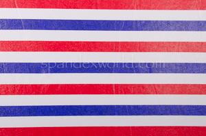 Stripes Hologram (Red/White/Blue)
