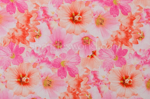 Floral Print (Fuchsia/Pink/Multi)