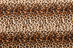 Animal Print (Gold/Brown/Multi)