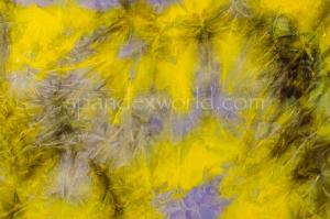 Tie Dye Stretch Velvet (Olive/Lavender/Multi)