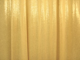 Metallic Slinky (Gold/Gold)