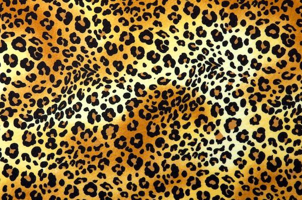 Animal Print (Leopard print on poly spandex)