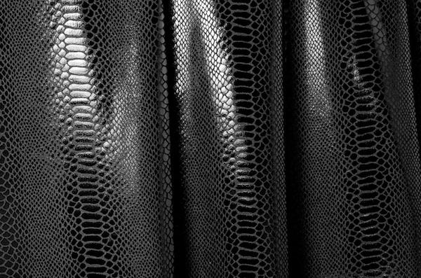 Animal Print Hologram (Black/Black)