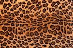 Animal Print Stretch velvet (Leopard print)