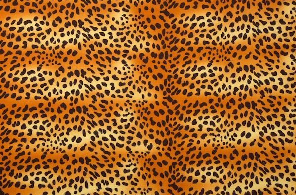 Animal Print (Black/Brown/Gold)