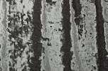 Stretch Crushed Velvet (Gray)