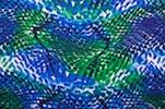 Animal Prints (Blue/Green/Multi)