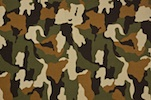Printed Camouflage (Black, Beige, Olive, Brown)