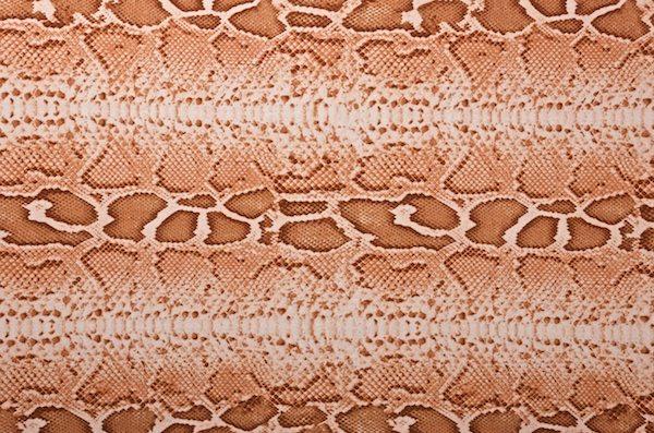 Snake Prints (Beige/Brown)