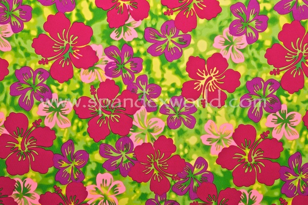 Floral Prints (Green/Fuchsia/Multi)
