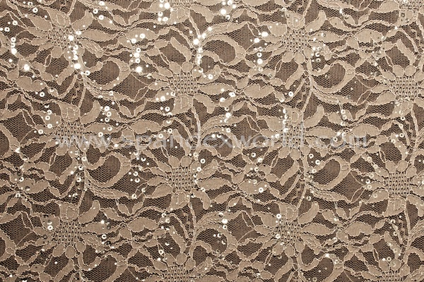 Stretch Sequins Lace (Taupe/Silver)