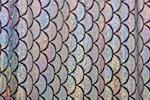 Fish scale Hologram (Black/Silver)