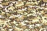 Printed Camouflage (Black/Beige/Olive/Multi)