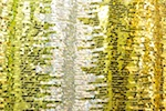 Stretch Sequins (Lime/Silver/Gold/Multi)