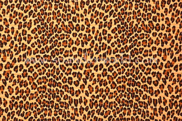 Animal Prints (Beige/Black/Brown)