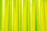Mystique Spandex (Lime/Chartreuse)