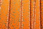Novelty Spandex (Orange)