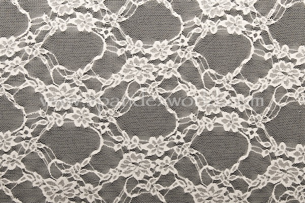 Stretch Lace (Off White)