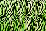 Animal Print Stretch Velvet (Zebra print))