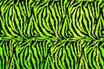 Animal Prints Glitter Velvet (Zebra print)