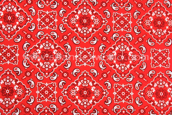 Pattern/Abstract Hologram (Red/Silver)