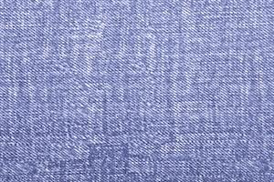 Stretch Denim Print  (Blue/White)