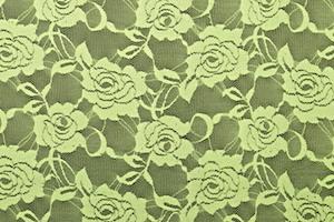 Stretch Lace (Kiwi Green)