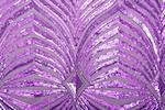 Non Stretch Sequins (Purple/Purple)