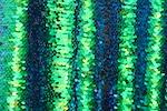 Stretch Sequins (Black/Green/Black Pearl)