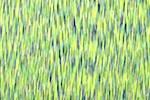 Space Dye Print Spandex (Neon/Navy/Multi)