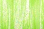 Animal prints hologram (Lime)