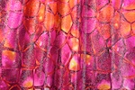 Pattern/Abstract Hologram (Fuchsia/Orange/Multi)