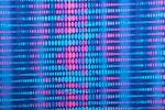 Abstract Print (Blue/Fuchsia/Multi)