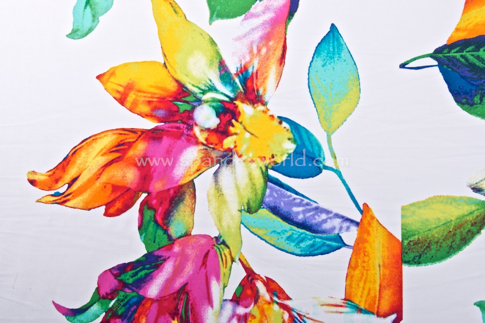 Floral Print (White/Aqua/Fuchsia/Multi)