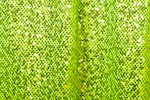 Stretch Sequins (Lime/Chartruese)